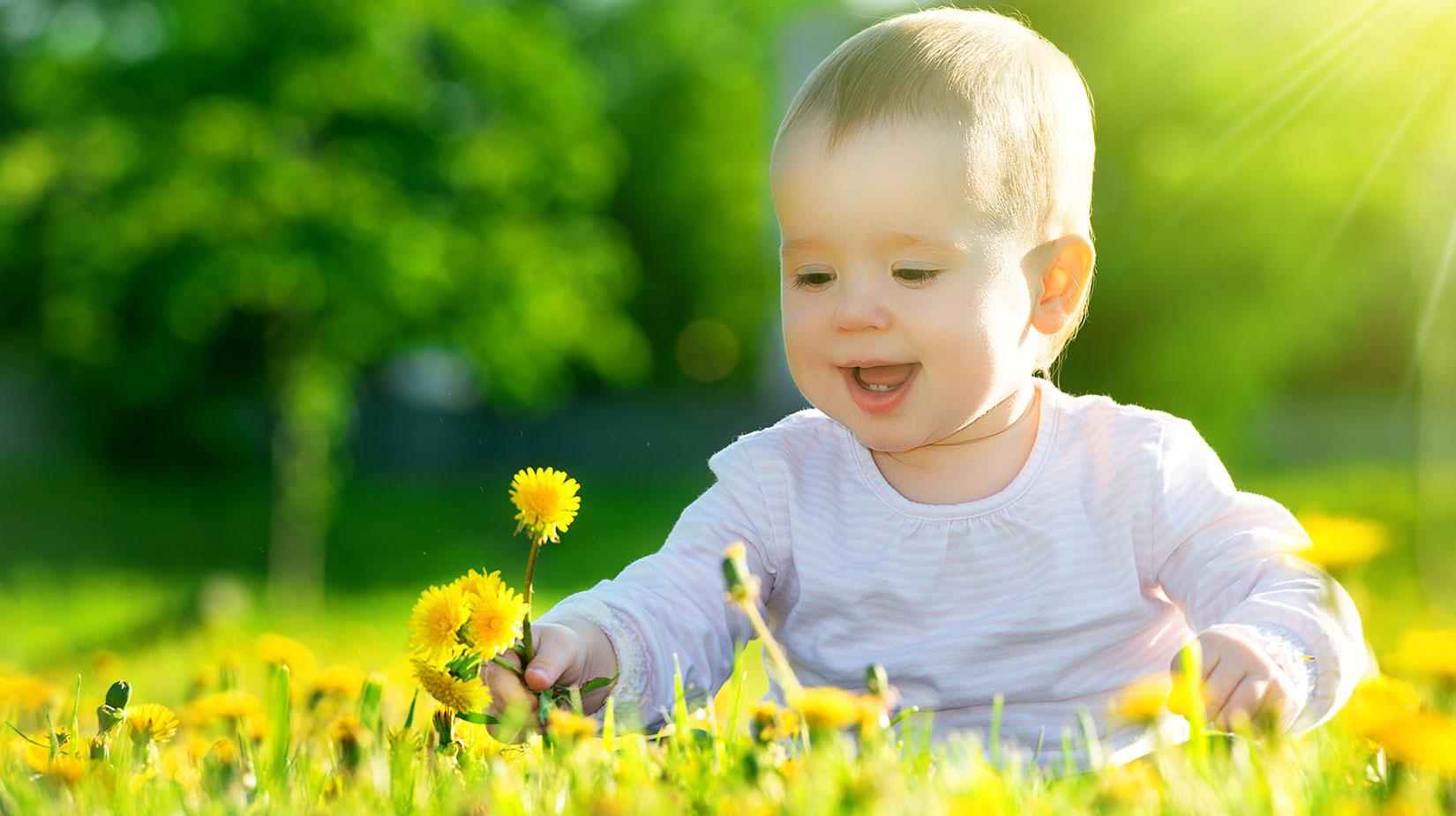 Bebekleri Alerjiden Korumak İçin