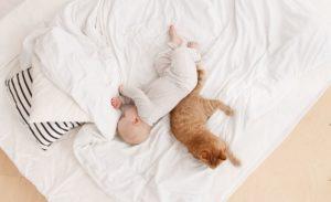 Çocuğun Kendi Yatağında Uyumaya Alışması İçin…